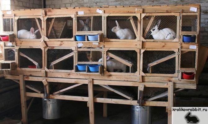 Клетки для молодняка кроликов своими руками в 2 яруса фото